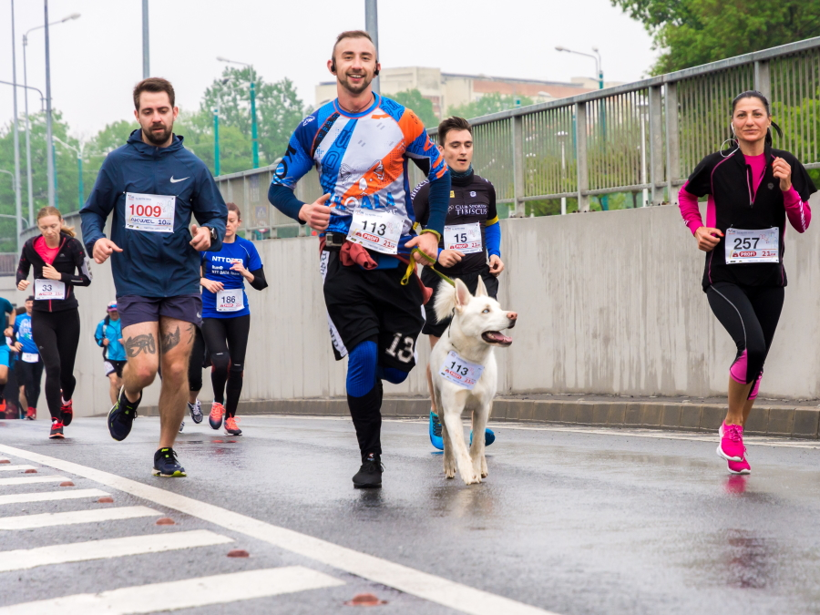 Image of human and dog 'runners'